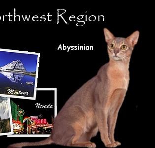 CFA Northwest Region